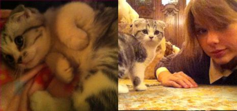 Taylor Swift-Meredith