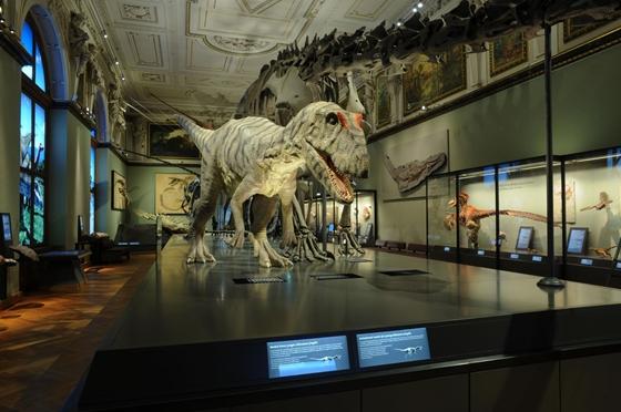 Fotó: bécsi Természettudományi Múzeum