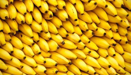 banan_novidadediaria_com_br_2015