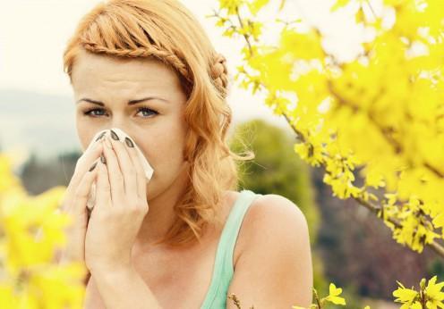 www_prahranhealthfoods_com_au_allergia_2016