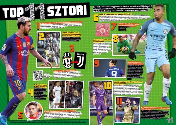 49lajk_10_11_foci_top11
