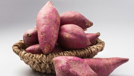 57189576 - red sweet potato