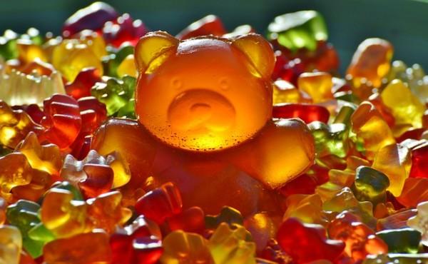 giant-rubber-bear-1089612_640